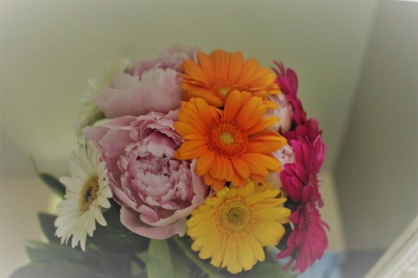 mirrorflowers